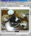 ネコナベ_01.jpg